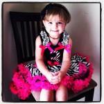 Hot Pink and Zebra Third Birthday Pettiskirt Set