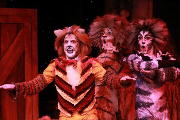 Dutch Apple Theatre CATS