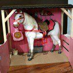 Our Generation Arabian Horse