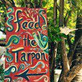 Feed The Tarpon at Robbie's – Islamorada, FL