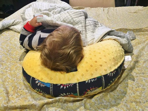 Hen Nursing Pillow