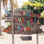 The Butterfly Farm Sigh