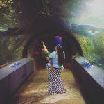 Newport Aquarium – Newport, KY