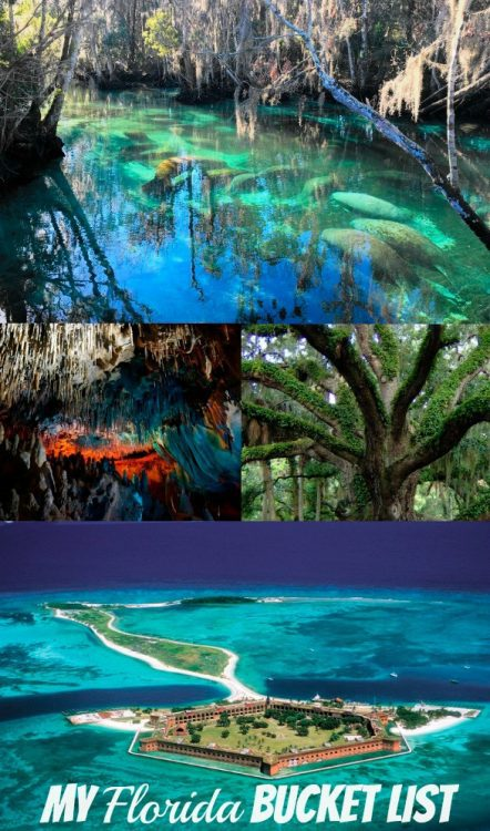 Free Nature Things To Do In Florida